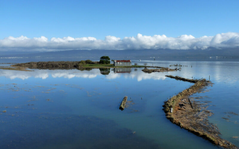 A photo of Indian Island, Humboldt Bay