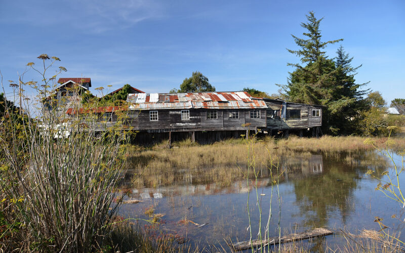 A photo of a building by Humboldt Bay
