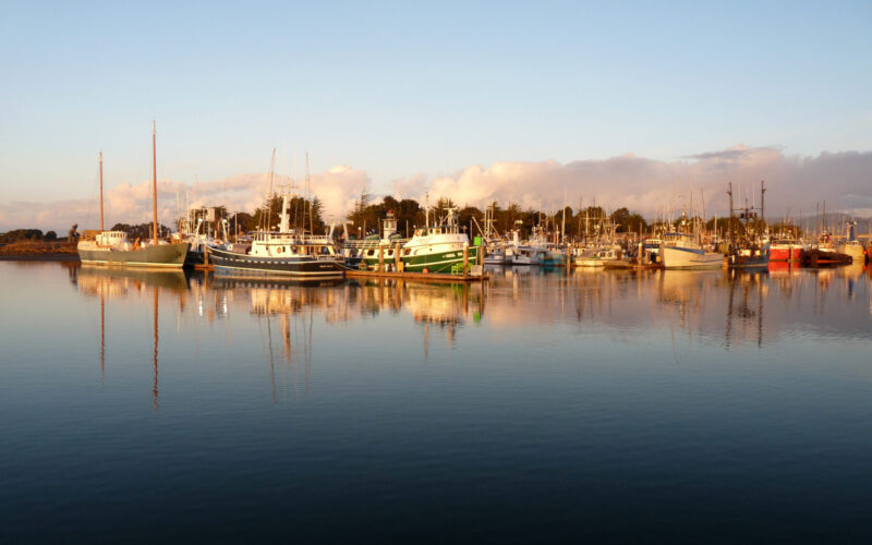 A photo of boats on Humboldt Bay